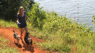 Kya  walks 2 dogs back after a swim in the River Nile